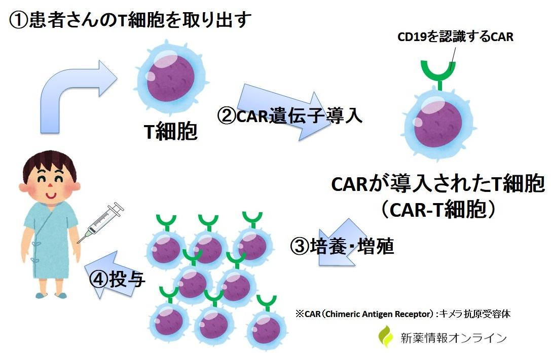 CAR-T療法の流れ